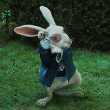 RABBIT WITH A WATCH